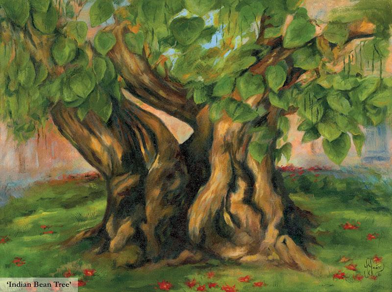 Rhapsody of an Indian Bean Tree