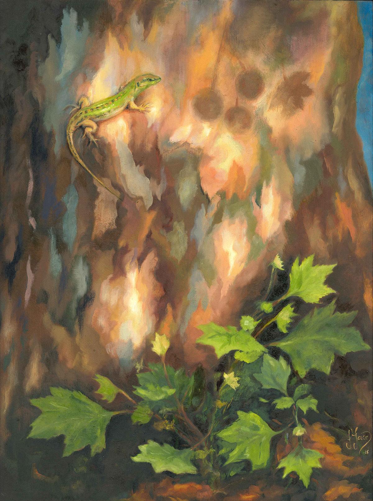 Rhapsody to a Plane Tree - Oil on wood - 40 x 30 cm